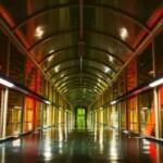 «Балтика» проведет экскурсии в Международный день музеев