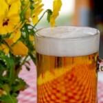 Американские пивовары перенимают традиции бельгийского фермерского пивоварения