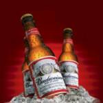 Budweiser обошёл Bud Light и стал самым дорогим пивным брендом мира