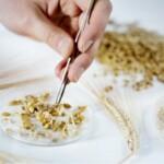 Carlsberg Eastern Europe начала сбор урожая на России