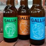 Heineken купил долю во французской крафтовой пивоварне Gallia