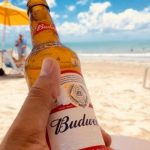 У AB InBev Efes выросли продажи пива в сегментах Premium и SuperPremium