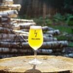 Malanka стала самой популярной пивоварней в Беларуси