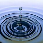 Члены АПП рассказали о своих инициативах для сохранения водных ресурсов